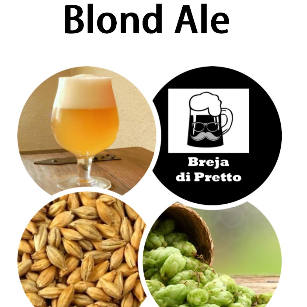 Receita Blond Ale 20Litros