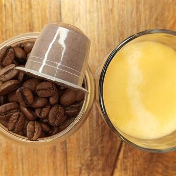 Café Coruja Arábica Especial Premium em Cápsulas 50g