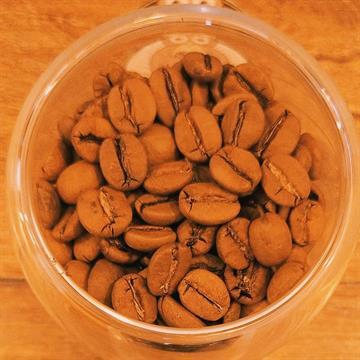 Café Coruja Arábica Gourmet em Grãos 1kg