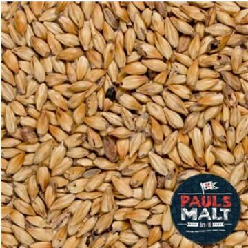 MALTE PAULS MALT MARIS OTTER PALE ALE - SACA 25KG
