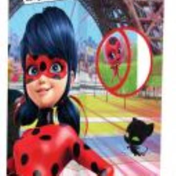Lady Bug: Biblioteca dos Heróis
