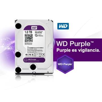 HD PURPLE 1TB WESTERN DIGITAL INTERNO HDD 3.5