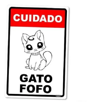 Placa Decorativa Gato Fofo 24X16