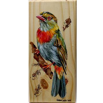 Anambé-de-whitely - arte em madeira Bio & Mãe Terra