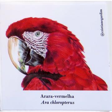 Arara-Vermelha - adesivo em papel