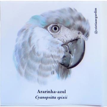 Ararinha-Azul - adesivo em papel