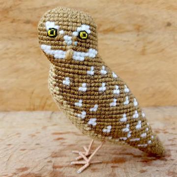 Coruja-Buraqueira - miniatura Pássaros Caparaó ponto-cruz