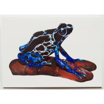 Sapo-Garimpeiro - Reprodução Fine Art