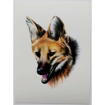 Lobo-Guará - Reprodução Fine Art