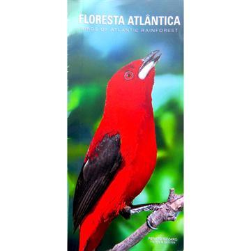 Guia de Aves Floresta Atlântica / Birds of Atlantic Rainforest