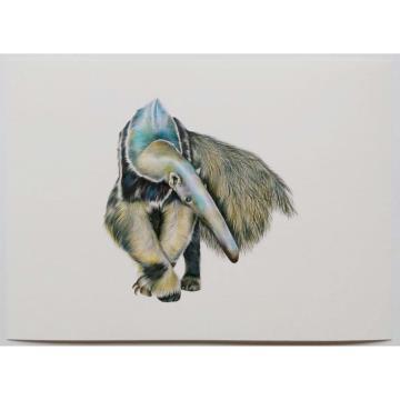 Tamanduá-Bandeira - Reprodução Fine Art