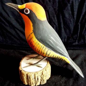 Benedito-de-testa-amarela - Miniatura em madeira Valdeir José