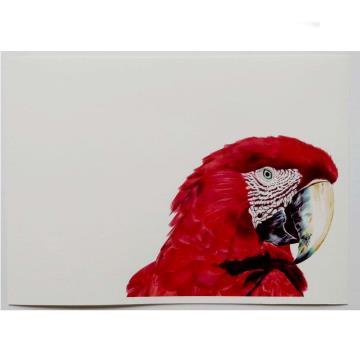 Arara-Vermelha - Reprodução Fine Art