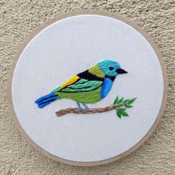 Saíra-sete-cores G - Bordado a Mão em Bastidor - Pássaros Caparaó