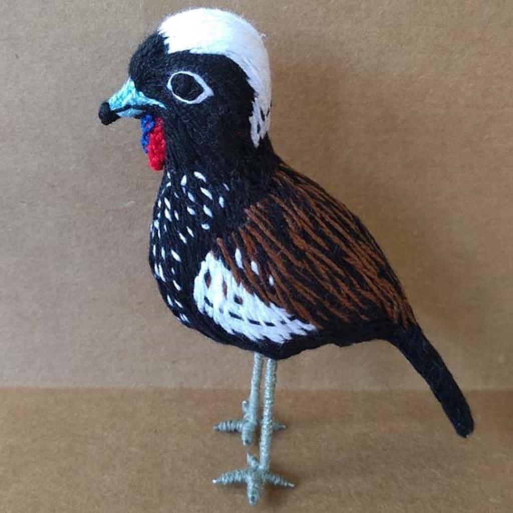 Jacutinga - miniatura Pássaros Caparaó bordado